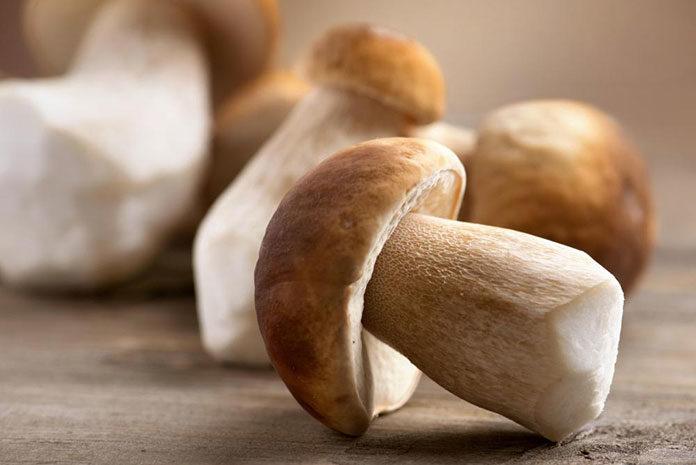 Sposób na suszone grzyby w piekarniku